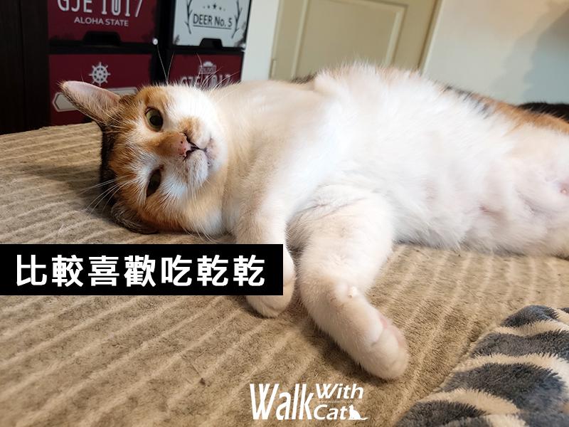 貓狗保健品PS BUBU關節腎臟