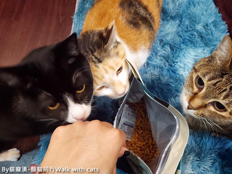 怪獸部落主食糧貓飼料